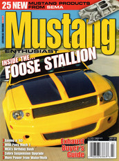 Mustang Enthusiast
